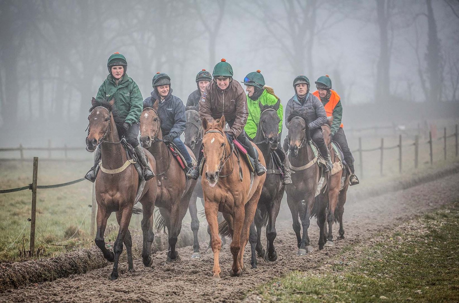 Group of racehorses on gallops. Nigel Twiston Davies. Racehorse trainer. Canter Carpet environmental technology.
